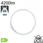 Circline T5 Ø16 Fluo 2Gx13 55W 4200lm 4000K